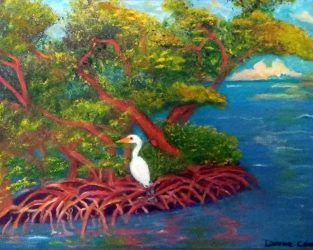 Mangrove With A Visitor
